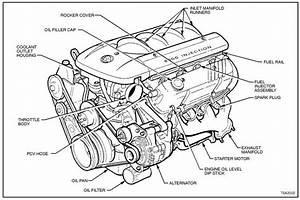 V8 Engine Drawing At Getdrawings Com
