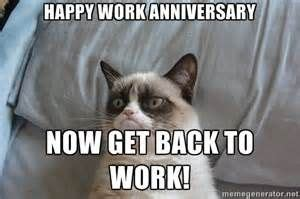 Anything to do with cats? Happy Work Anniversary Grumpy Cat   Grumpy cat quotes ...