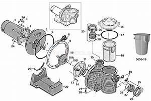 Sta-rite Max-e-pro Pump Parts