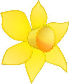 image  pixabay daffodil yellow flower floral