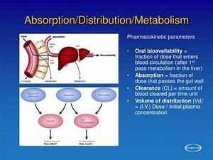 Ppt  Tox In Drug Design Powerpoint