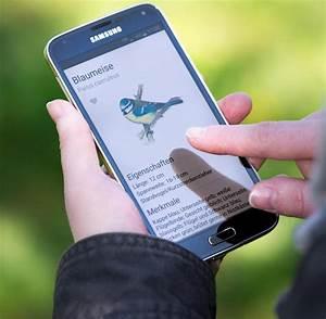 Rolladensteuerung Per App : natur apps so bestimmen sie v gel b ume und pflanzen welt ~ Michelbontemps.com Haus und Dekorationen