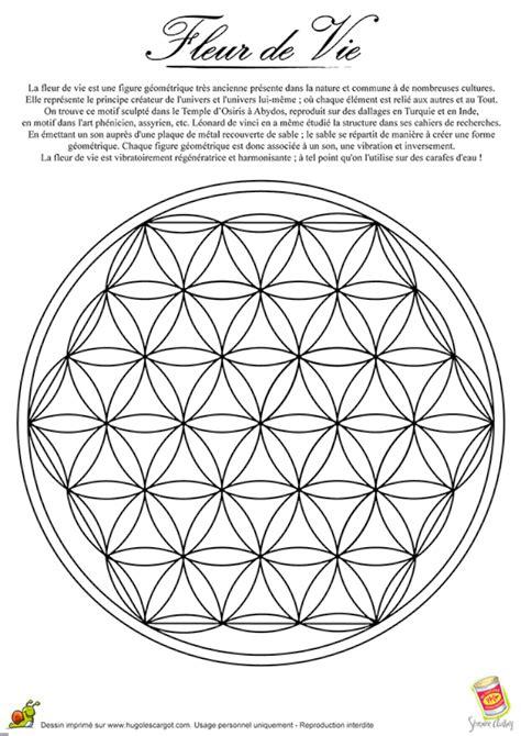 coloriage la fleur de vie tattoos fleur de vie