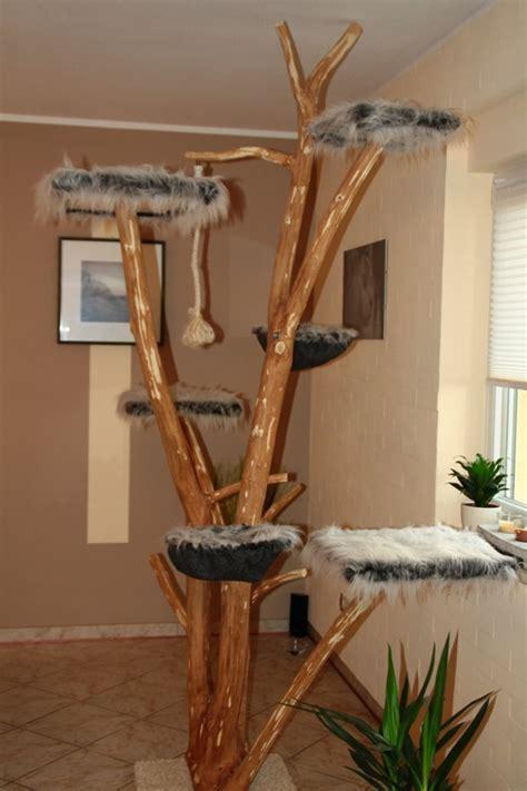 kratzbaum echter baum katzenbaum aus baumstamm kaufen wohn design