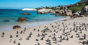 Blitz Reisen Südafrika : s dafrika reisen mit kindern spezialist f r familienferien ~ Kayakingforconservation.com Haus und Dekorationen