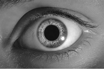 Blinking Eye Gifs Eyes Blink Bloody 3d