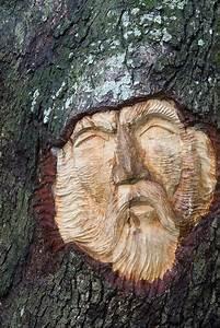 Duchove stromu od rezbare keitha jenningse for Tree spirit carvings by keith jennings