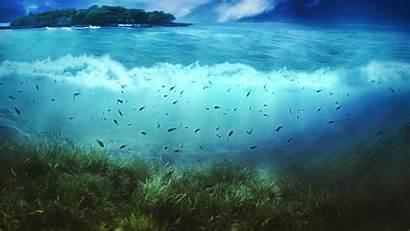 Underwater Desktop Wallpapers Pixelstalk Super 1080 1920