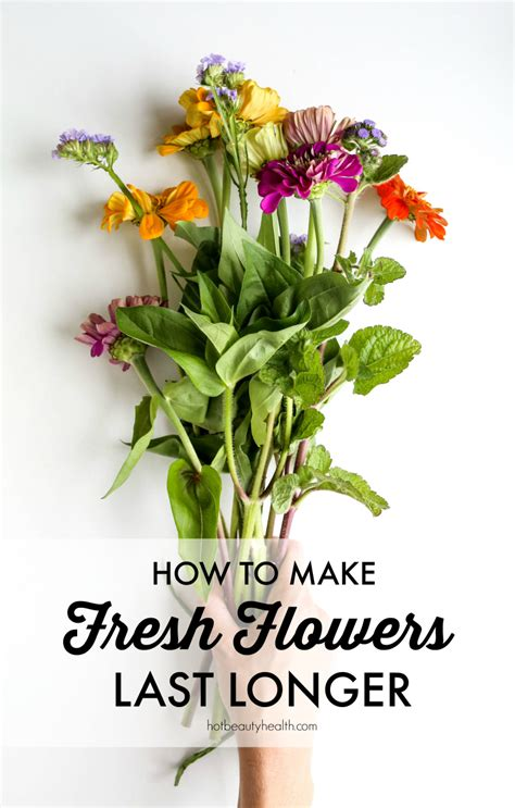 How To Make Fresh Flowers Last Longer. Blinds In Windows. Curved Kitchen Island. Top Furniture Brands. Sconce With Switch. Desk Wall Unit. Unique Curtains. Pull Out Laundry Hamper. Mirror Shop