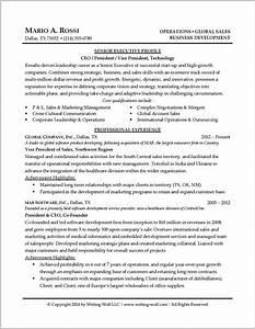 resume writing tips for senior executives resume With resume writing services for senior executives