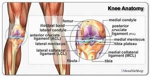 Aby stehna hubla a ne získávala objem ve svalech