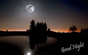 Lovely Good Night wallpapers ~ Allfreshwallpaper