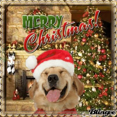merry christmas lab picture 135568068 blingee com