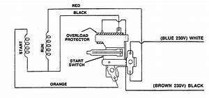 Wiring Diagram  31 Garbage Disposal Wiring Diagram
