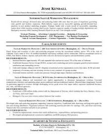 great exles of sales resumes sales and marketing resume sle resume format