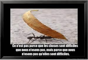Citation Vie Difficile by Citation Difficile En Image Citation En Image Photo
