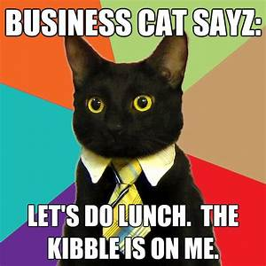 business cat sayz lets do lunch the kibble is on me ...