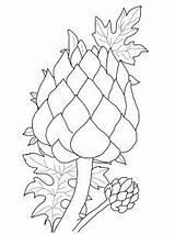 Artichoke Coloring Magnolia Flower Printable Drawing Getcolorings Supercoloring Campbells Coloringbay Pattern Categories sketch template