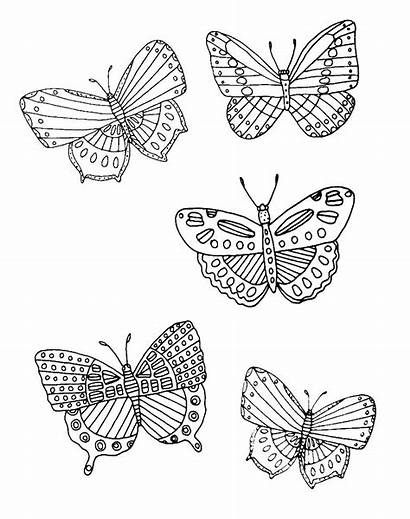 Colouring Mindfulness Nature Coloring Butterfly Adults Books