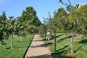 carneros inn apple orchard – Feather Factor