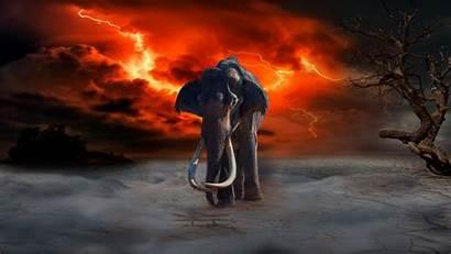 4k Fantasy Photoshop Elephant Lightning Background Uhd