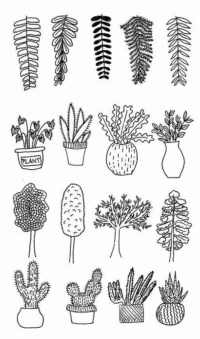 Coloring Plants Doodle Doodles Journal Pages Flowers