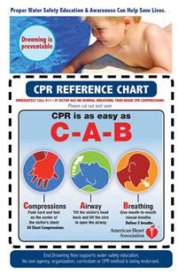 Child Infant CPR Chart Adults
