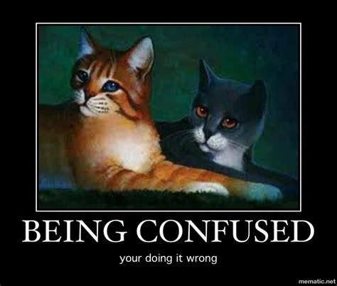 Warrior Cats Memes - warrior cats demotivational by nightfury10 on deviantart
