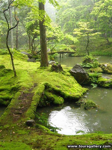 moss garden japan japanese moss garden photography pinterest