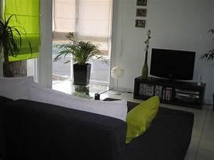 Salon Vert De Gris : deco salon vert anis ides ~ Melissatoandfro.com Idées de Décoration