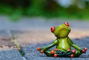 Frosch Bilder Lustig : kostenloses foto yoga frosch entspannt figur kostenloses bild auf pixabay 914516 ~ Whattoseeinmadrid.com Haus und Dekorationen