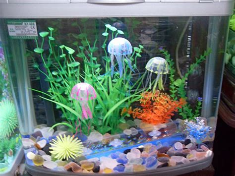 tropical fish tank decorations fish tank decorations aquarium decorations decorating your fish tank aquarium hq