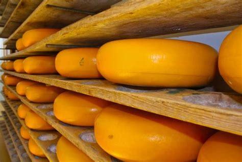 listeria  cheese wur