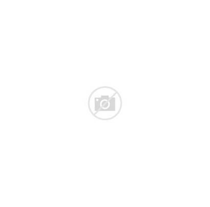 Sloth Screen Door Magnets