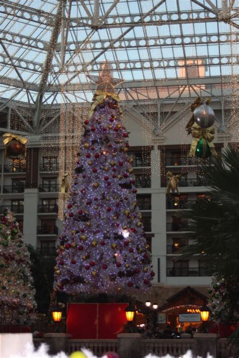 lighting stores grapevine tx another christmas family tradition ice at the gaylord