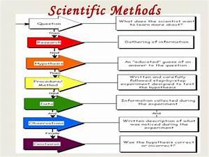 7 Steps Scientific Method Order | Short Hairstyle 2013