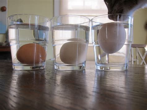 is sink water bad for you is this egg good root simple