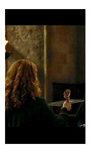 Image - Severus-Snape-Harry-Potter-And-The-Goblet-Of-Fire ...
