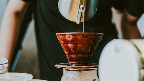 How to brew a french press. This is the healthiest way to brew coffee, according to science | KOKO EAT