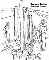 Coloring Barrel Racing Clipart Desert Sonoran Printable Library Clip Popular Wolf Robot Coloringhome sketch template