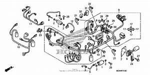 Diagram  Honda Deauville Nt650v Wiring Diagram Full