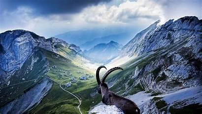 2160 3840 4k Switzerland Wallpapersafari