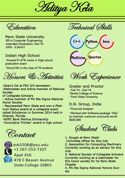 Graphic Resume by Graphic Resume And Adobe Illustrator Art003