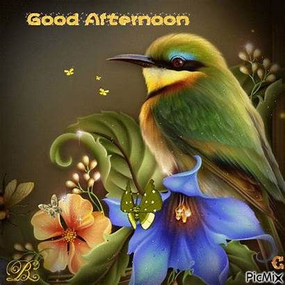 Afternoon Gifs Friends Greetings Enjoy Help Angels