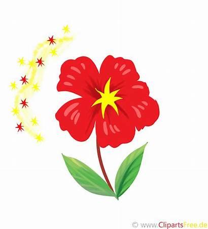 Clipart Blume Birthday Happy Flor Blomma Fiore
