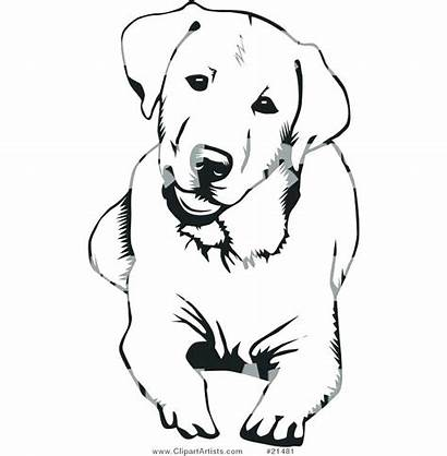 Dog Chocolate Clipart Coloring Pages Retriever Short
