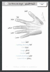 451 best images about Arabic اللغة العربية on Pinterest ...