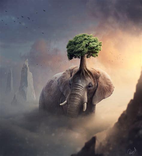 Making Fantasy Elephant Tree Photo Manipulation In