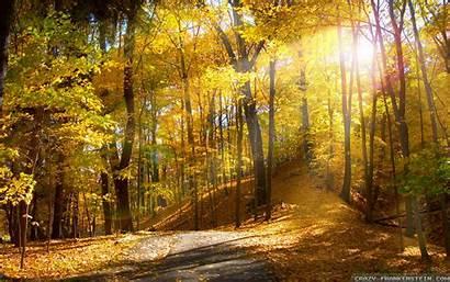 Fall Season Wallpapers Seasonal