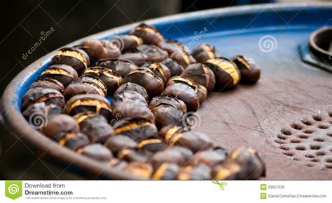 Chestnuts Roasted On A Blue Barrel Stock Photo Image